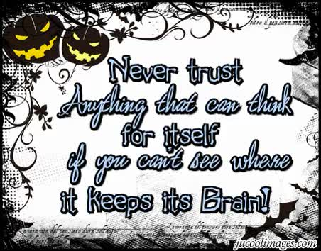 Watch and share Funny Childrens On Halloween Quotes And Sayings GIFs on Gfycat