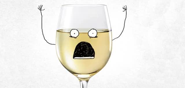 Watch and share ¿Cómo Reconocer Un Buen Vino De Un Mal Vino? animated stickers on Gfycat