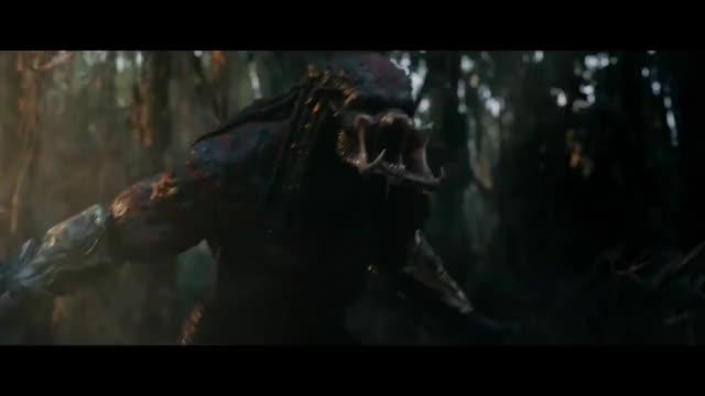 Watch and share Predators GIFs and Predator GIFs on Gfycat