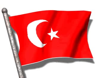 Watch and share Animated Turkey Flag Image GIFs on Gfycat