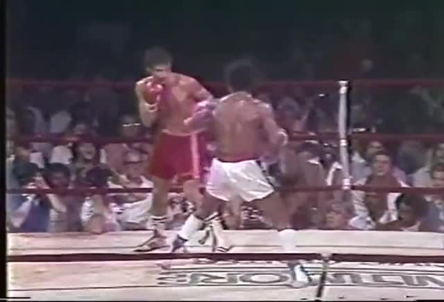 Watch Sugar Ray Leonard vs Frank Santore GIF on Gfycat. Discover more Frank, Leonard, People & Blogs, Ray, Santore#, Sugar, jacovini1313, vs GIFs on Gfycat