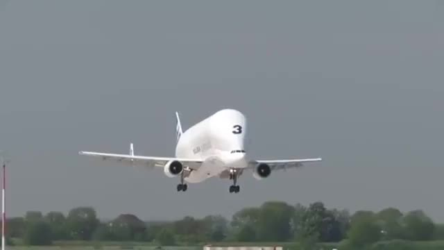 Watch and share The Majestic Airbus Beluga GIFs on Gfycat