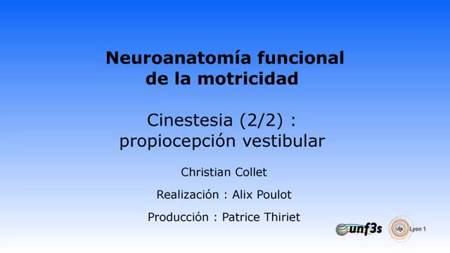 Watch and share Propiocepcion Vestibular GIFs on Gfycat