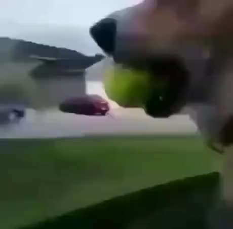 You have zero ball now - gif