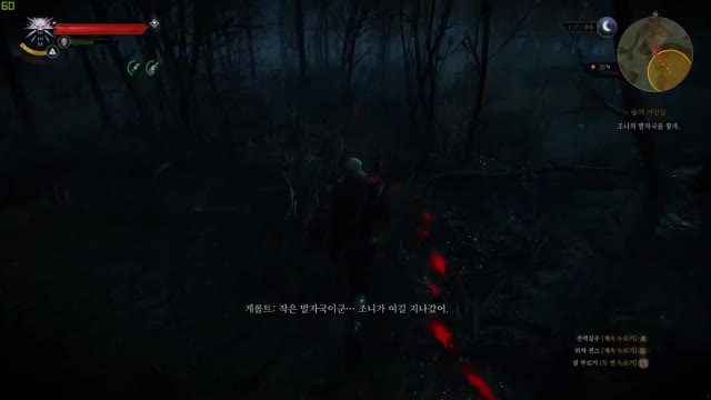 Watch The Witcher 3 | GeForce로 촬영 GIF by @cleanbandit on Gfycat. Discover more GeForceGTX, ShotWithGeForce, TheWitcher3, Gaming, JY H GIFs on Gfycat