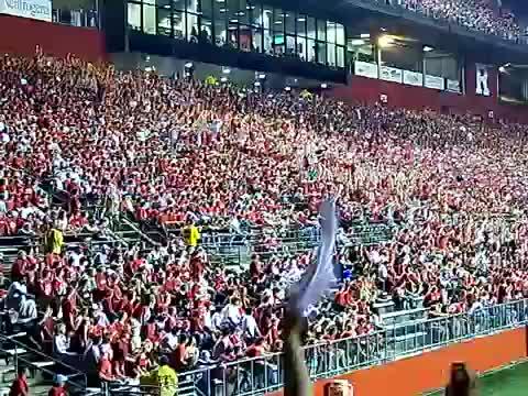 Football, Rutgers, crowd, stadium, wave, Rutgers Stadium Wave GIFs