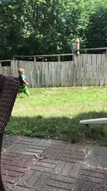 A fence can't stop little boy from playing with his new best friend. GIFs
