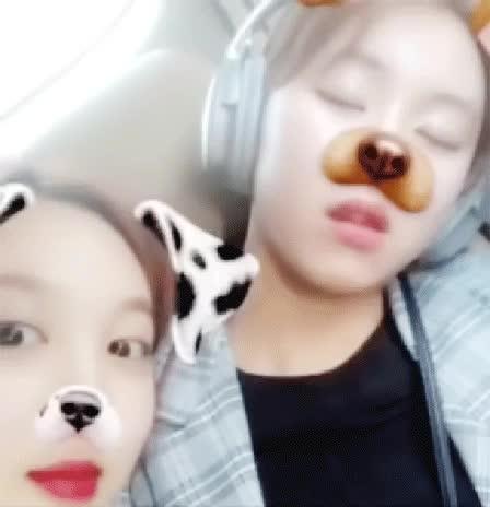 chaeyoung, nayeon, twice, 🍉💖 #YesOrYes, sleepy cub GIFs