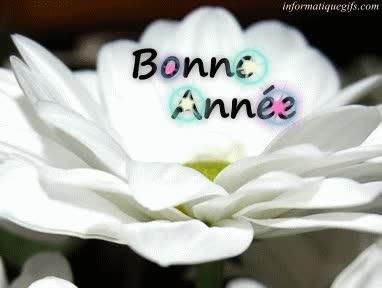 Watch and share Gif Anime Bonne Et Heureuse Année Puis Bonne Santé GIFs on Gfycat