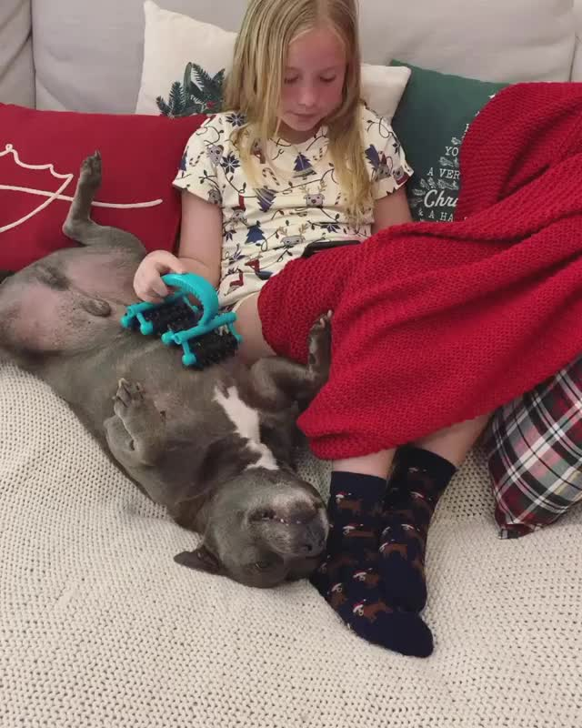 Watch and share The Best Brushy GIFs by vani  on Gfycat