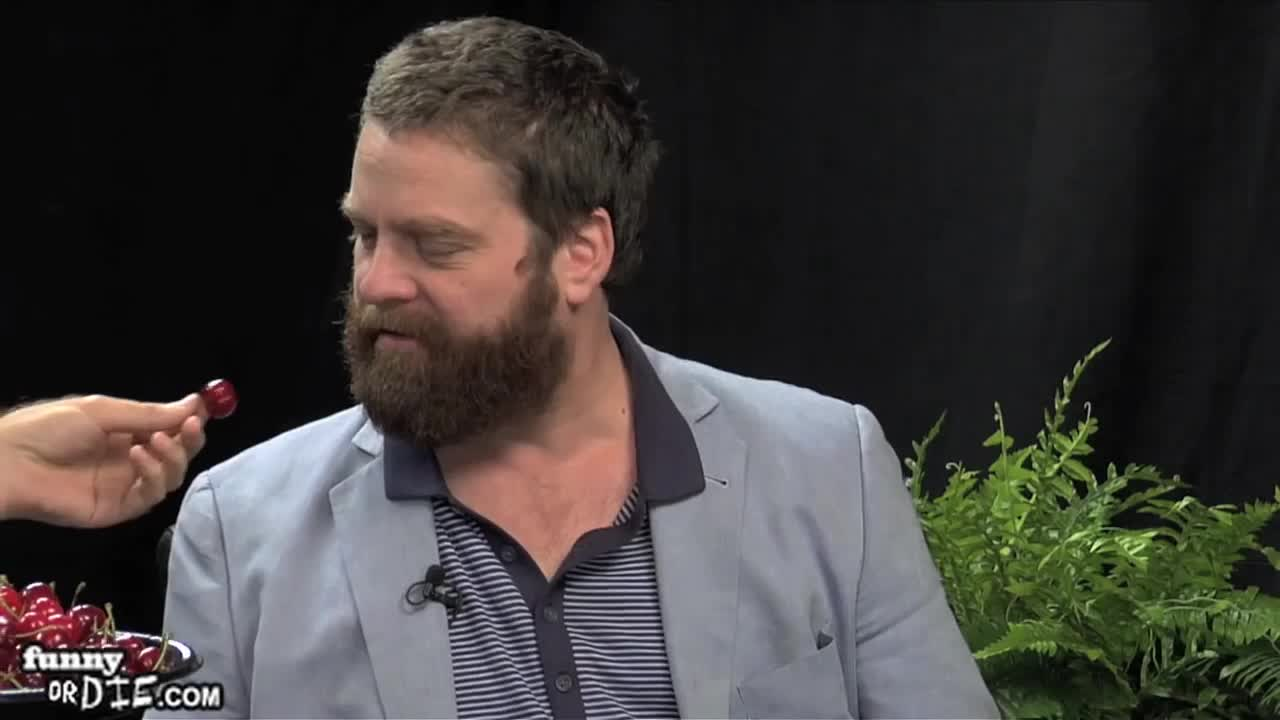 FoD, Will Ferrell Between Two Ferns with Zach Galifianakis, between two ferns, between two ferns with zach galifianakis, fod, funny or die, funnyoooordie, will ferrell between two ferns with zach galifianakis, zach galifianakis, sharing cherries GIFs