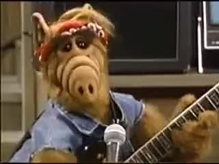Watch this alf GIF on Gfycat. Discover more alf GIFs on Gfycat