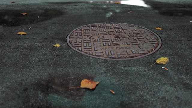 "Watch ""Gloomy NYC"" By David Brodeur @LockedAndLoading GIF by Locked And Loading (@lockedandloading) on Gfycat. Discover more 3d, city, fall, leaves, manhole, new york city, nyc, road, sewer, street, wind GIFs on Gfycat"