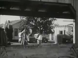 Watch Cotton-Pickin' Southern States - Plantations & Slavery Re-enacted - 1950s! GIF on Gfycat. Discover more related GIFs on Gfycat