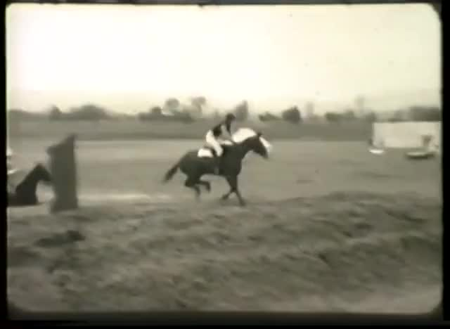 Watch and share Peshawar Vale Hunt GIFs and Point To Point GIFs on Gfycat