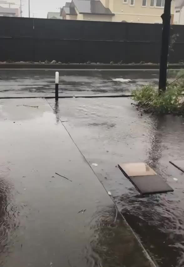 Watch and share Raining GIFs and Nature GIFs by mossberg91 on Gfycat