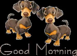 Watch and share Hello Goodmorning Photo: Goodmorning Goodmorning.gif animated stickers on Gfycat