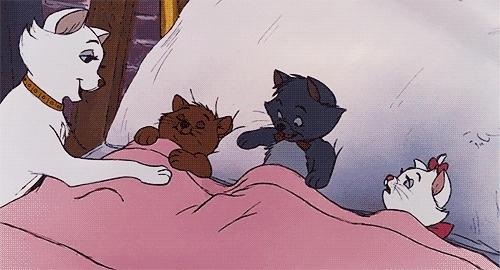good night, Goodnight GIFs