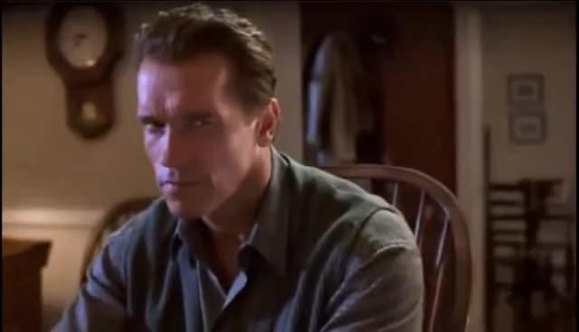 Arnold Schwarzenegger stare in True Lies GIFs