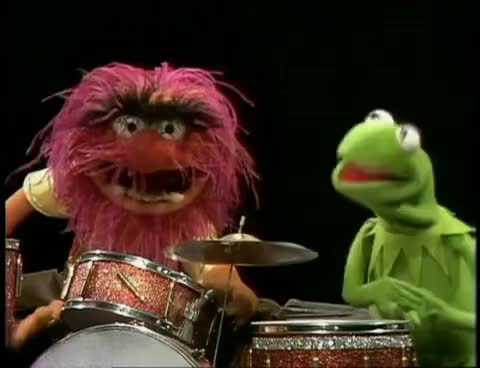 Watch Animal Compilation GIF on Gfycat. Discover more muppets GIFs on Gfycat