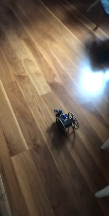 Watch and share Self-Driving Robot GIFs by aton_freson on Gfycat