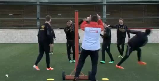 Watch Training GIF on Gfycat. Discover more related GIFs on Gfycat