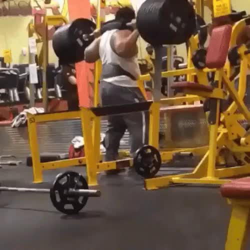 """Watch HMF while I try to prove that it's """"all muscle."""" GIF on Gfycat. Discover more related GIFs on Gfycat"""