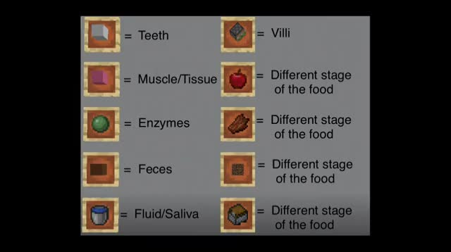 Watch and share Minecraft Digestive GIFs by evrlvideo on Gfycat
