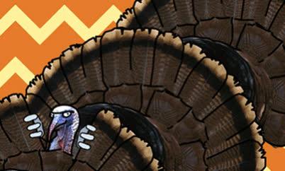 happy thanksgiving, matthew laud, thanksgifing, thanksgiving, turkey, Happy Thanksgiving GIFs