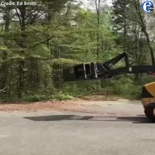 Watch This video from Millville, N.J. is all the proof you need that pollen is a re... GIF by PM_ME_STEAM_K3YS (@pmmesteamk3ys) on Gfycat. Discover more related GIFs on Gfycat