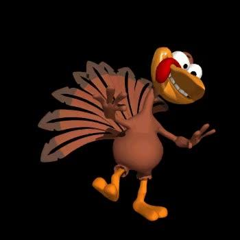 Watch this turkey GIF on Gfycat. Discover more turkey GIFs on Gfycat