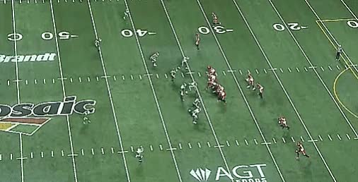 Watch and share Reggie Begelton GIFs and Roughriders GIFs by Archley on Gfycat