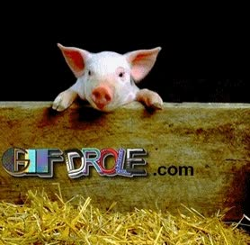 Watch and share NAF NAF. GIF Animé D'un Adorable Bébé COCHON DROLE À La Ferme GIFs on Gfycat