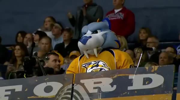 Watch and share Nashville GIFs and Hockey GIFs on Gfycat