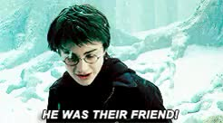 Watch and share Prisoner Of Azkaban GIFs and Order Of Phoenix GIFs on Gfycat