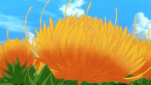 Watch and share Doromizu Jirochou GIFs and Flower Scenery GIFs on Gfycat