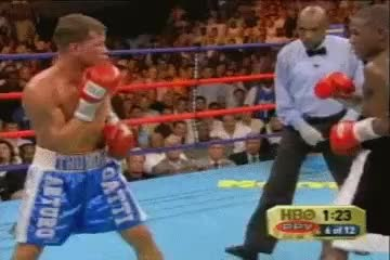 Watch mayweather vs gatti GIF on Gfycat. Discover more related GIFs on Gfycat