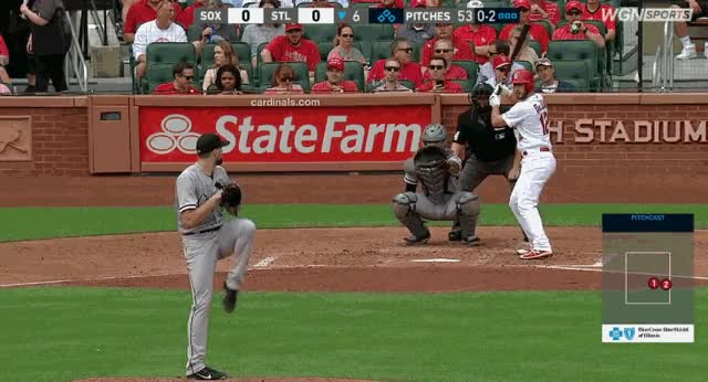 Watch and share Giolito-dejong GIFs by soxmachine on Gfycat