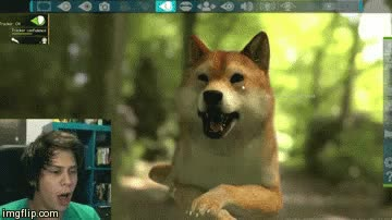 Watch DOGE!! GIF on Gfycat. Discover more doge, elrabos, elrubiuh, elrubius, elrubiusomg, ruben doblas, rubiuh GIFs on Gfycat