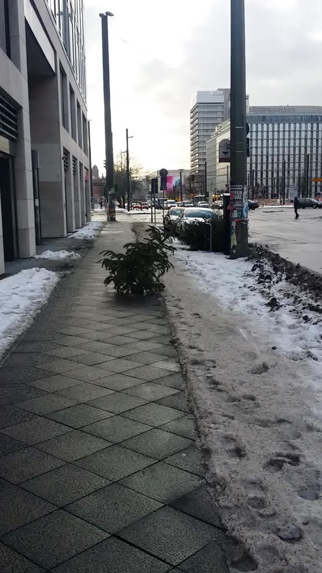 Watch and share Christmas Tree GIFs and Berlin GIFs by iamkosmonaut on Gfycat