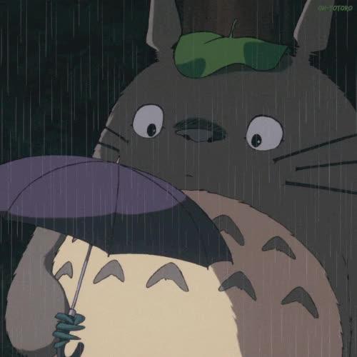 Watch and share My Neighbour Totoro My Neighbor Totoro Gif GIFs on Gfycat