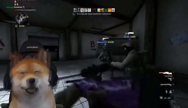 CS:GO Doge Streamer Best Moments! (TheoneManny)