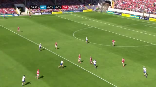 Watch and share Hurling GIFs and Munster GIFs on Gfycat