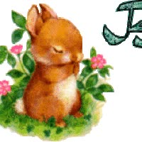 Watch Flower Hase Blume fleur lapin bunny rabbit alphabet animated gif GIF on Gfycat. Discover more related GIFs on Gfycat