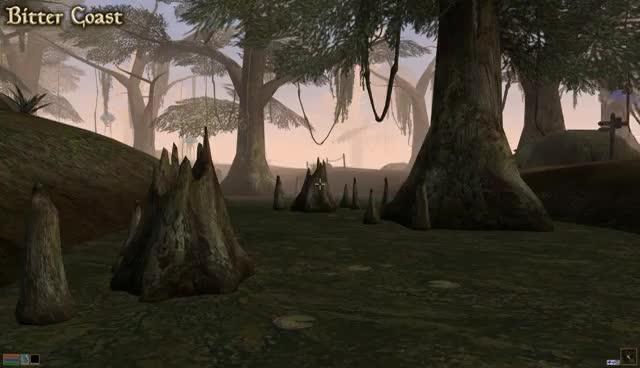 Morrowind vs Morrowind ESO - Side By Side Comparison GIFs
