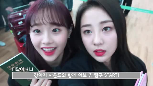 Watch and share Blockberry GIFs and Loona Tv GIFs by Angel on Gfycat
