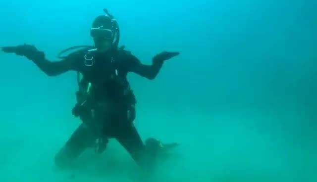 scuba-diving, Happyhappy GIFs