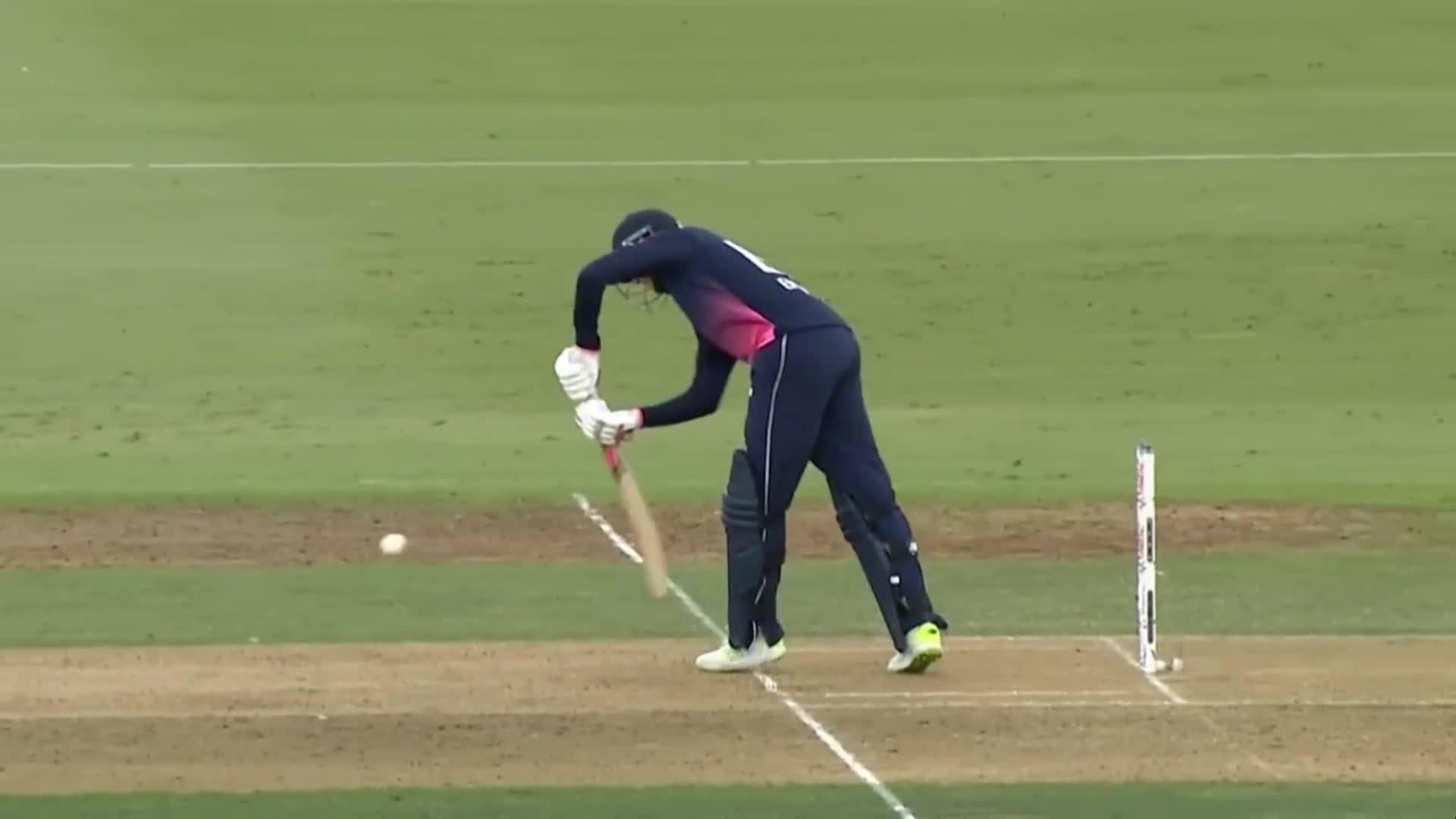 Cricket GIFs
