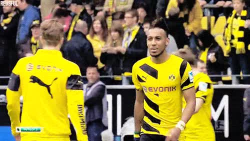 Watch and share Borussia Dortmund GIFs and I Love These Two GIFs on Gfycat
