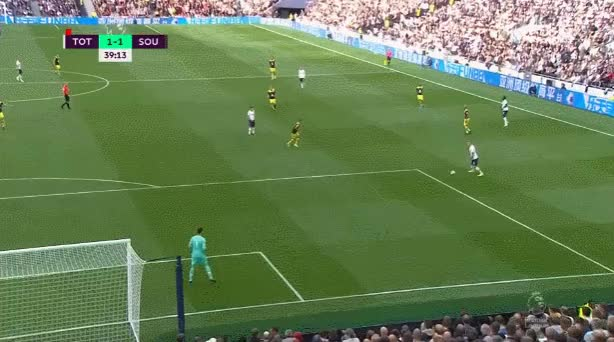 Watch and share Tottenham Hotspur GIFs and Southampton GIFs on Gfycat